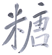 Written Chinese: A Brief Overview
